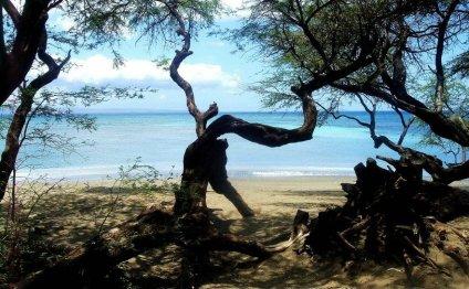 атолл - Самое интересное в