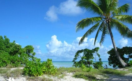 Богатством природы острова