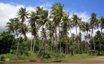 Список островов Тихого океана